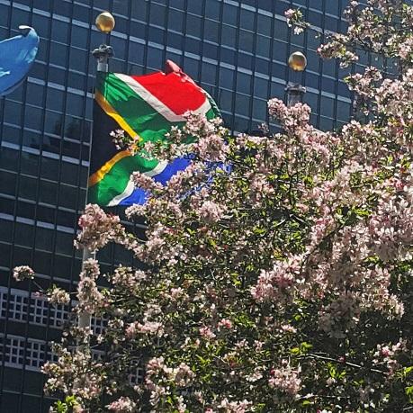 UN SA flag resized