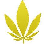 FoGfA-leaf-420-sub1