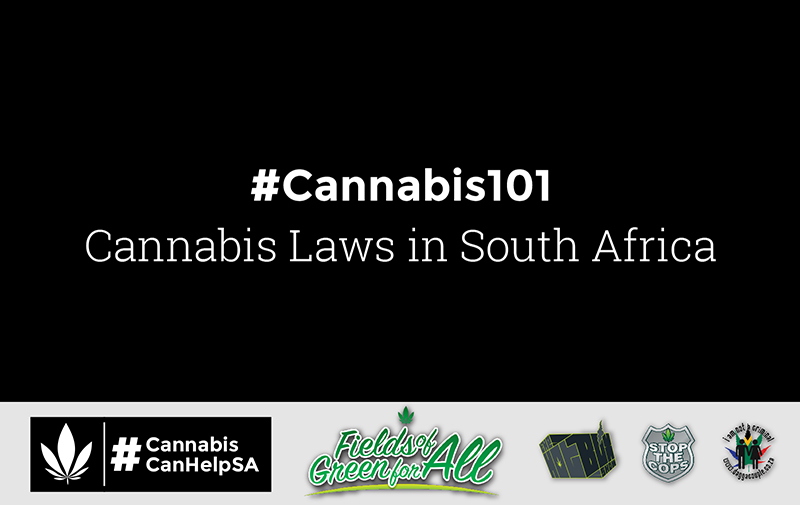 Cannabis Can Help South Africa
